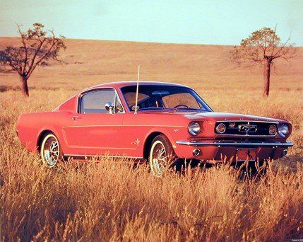 Your love for the car will get an expression with this red ford mustang fastback vintage car art print poster. Grab this fabulous poster for your home to give a personal touch to it. It would be an idle gift for any vintage car lover. Get up and buy this product for its durable quality and high degree of color accuracy.