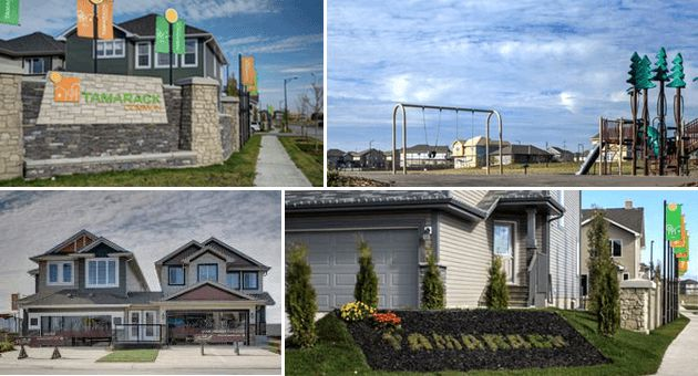 There are many reasons why you need to live in Tamarack Common, one of…