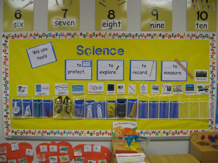 science tools bulletin board