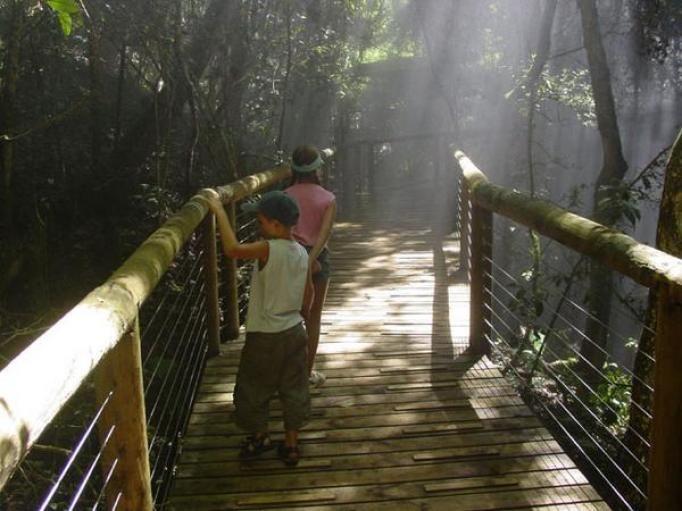Monkeyland & Birds of Eden wildlife sanctuary attraction at Plettenberg Bay