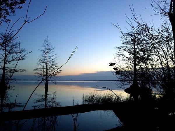 Morning Serenity, North Carolina