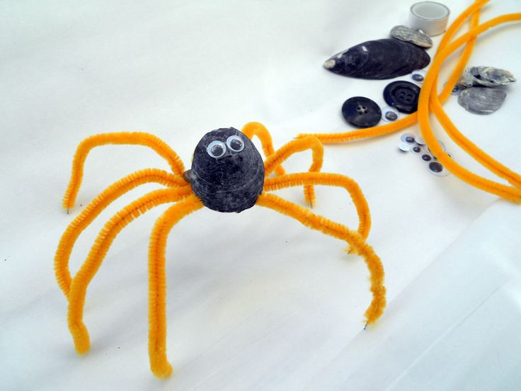 Spider - shell, chenille stems, plastic mobile eyes, button