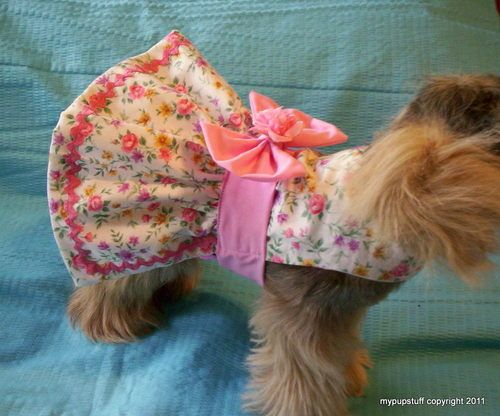 This dog harness dress is adorable but, my hubs would kill me if I put it on our little boy.