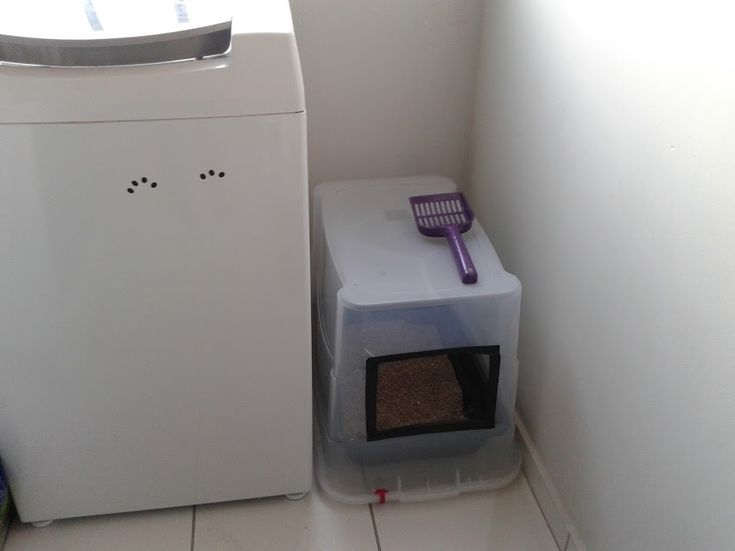 caixa de areia para gatos com cobertura