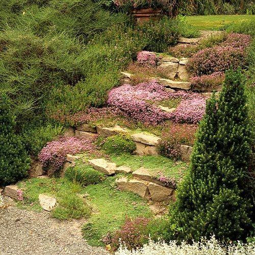 Best 25 Garden Steps Ideas On Pinterest