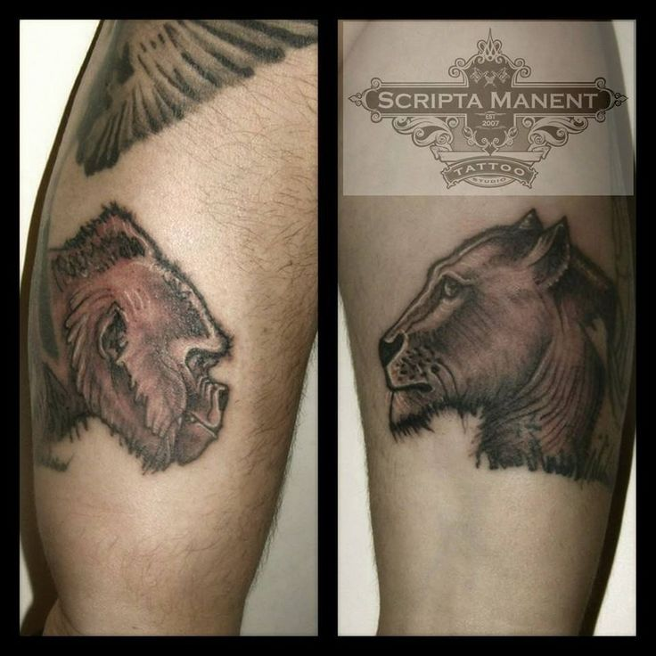 Gorilla & Lioness tattoos