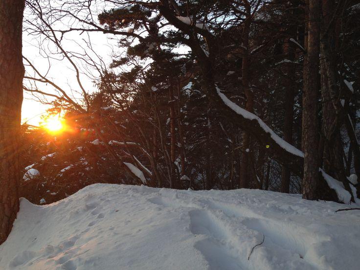 Schneeschuhlaufen & Absinthe Green Velvet  Das Absinthe Land, der Jura eignet sich besonders für die Faszination des Schneeschuhlaufens. Der Aufenthalt im Schnee mit seiner belebenden Wirkung und die Schönheit der Natur unter dem wechselnden Himmel macht den Absinthe auf dem Gipfel zum Hochgenuss.  www.absinthedistribution.ch