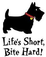 Scottie attitude...Holds true for Westies, too.  At least, mine!  lol