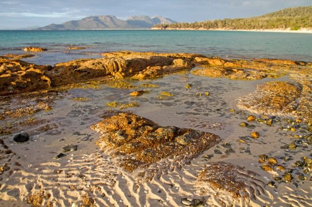 Australian Hiking Trails: Ten spectacular places you can only reach on foot. 3 of the 10 are located in Tasmania. Our mountain and coastal walks are legendary. If fact, the series 'Great Walks of Australia' ... of eight, four are in Tasmania! Image credit: Andrew Bain
