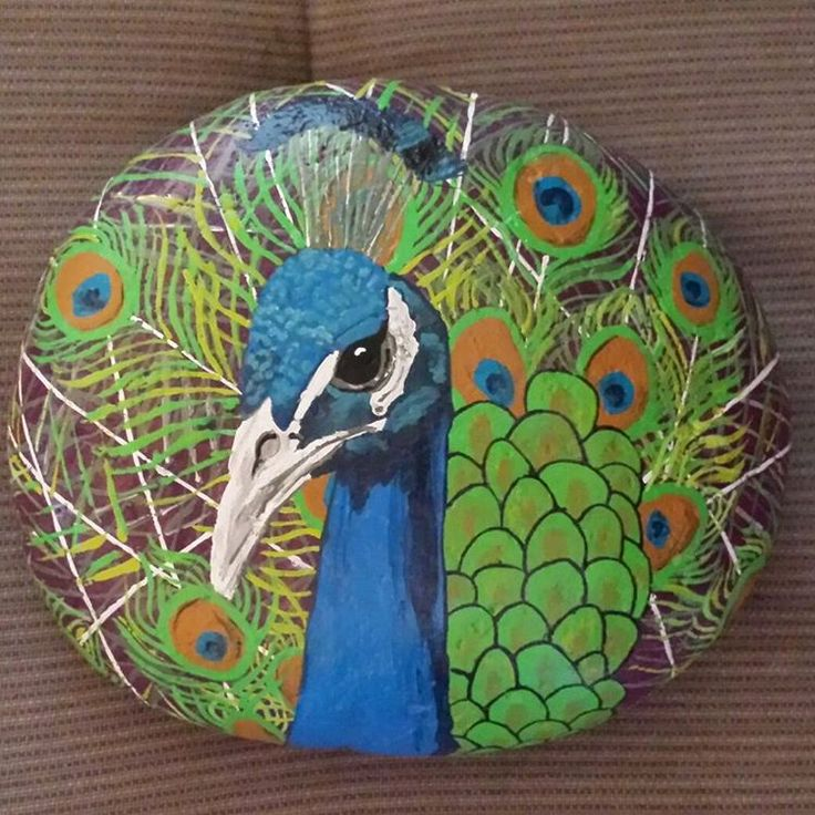 #peacock #rockpainting