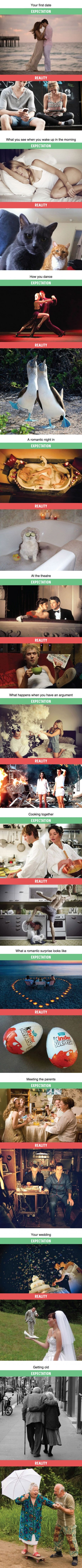 Relationships: Expectations Vs. Reality