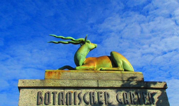 botanischer garten bern by Faszination Fotografie/M.H on 500px