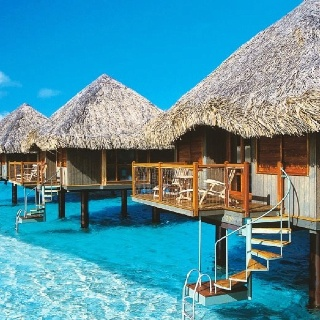 So going here one day!:  Thatched Roof, Buckets Lists, Oneday, Favorite Places, Dreams Vacations, Places I D, Best Quality, Borabora, Destination