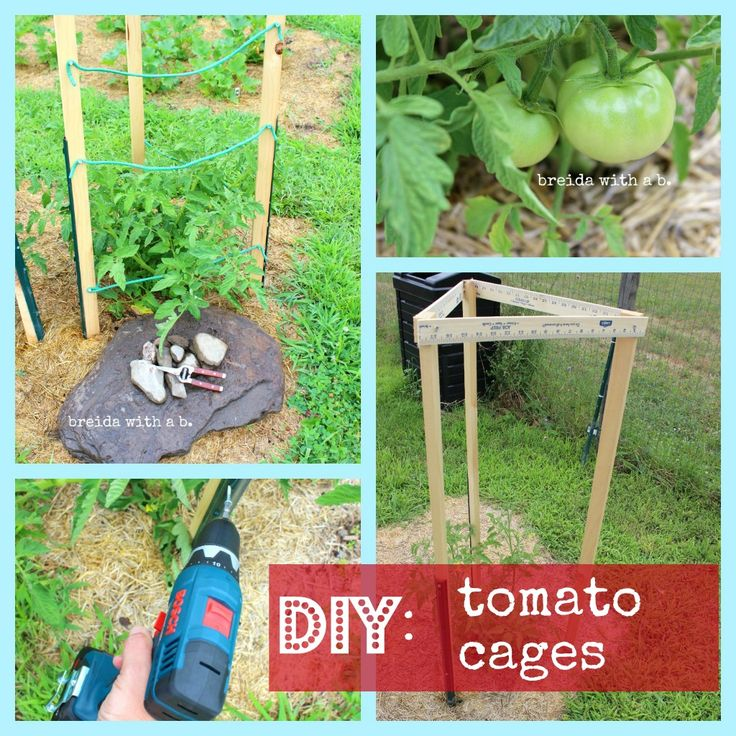 Grow Your Own!  And Build Your Own!  {DIY Tomato Cages} @breidawithab.com