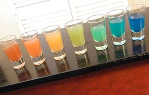 How to Make Rainbow Shots - The Rainbow Shooter | - theFNDC