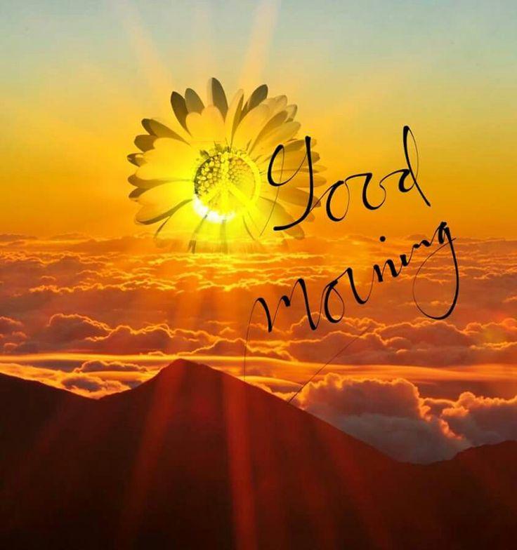 ☮ American Hippie ☮ Happy Hippie Day!  .... Morning