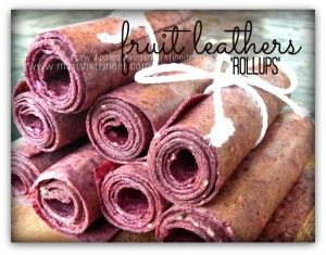 Fruit Leather Rollups