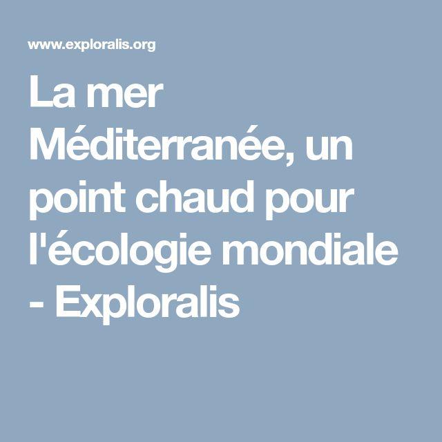 La mer Méditerranée, un point chaud pour l'écologie mondiale - Exploralis