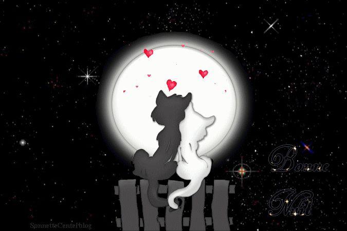 bonne soirée+bonne nuit+femmes+gifs Centerblog.net  | tags gif animé gif chat gif bonne nuit amour coeur bonne nuit ...