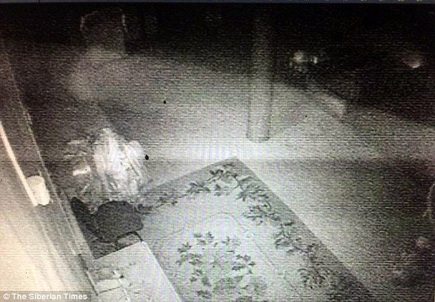 CCTV footage, which shows a grainy figure moving around a museum in Siberia, where the remains of Lama Dashi-Dorzho Itigilov are kept