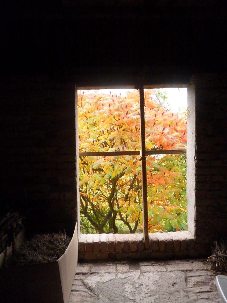 Blick aus dem fenster bilder  22 besten Blick aus dem Fenster Bilder auf Pinterest | Wandmalerei ...