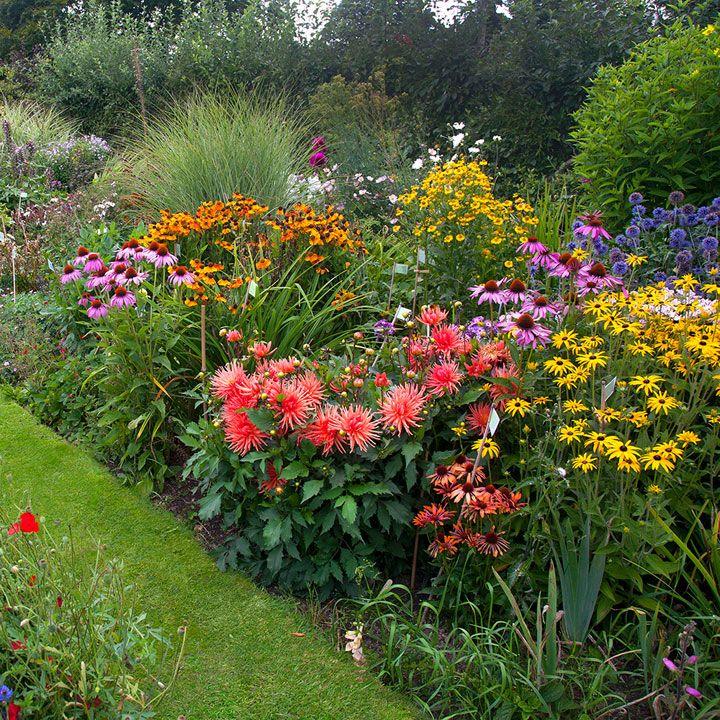 Cottage Garden Perennial Mix