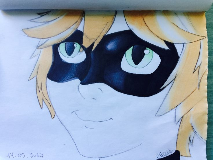 Chat Noir drawing
