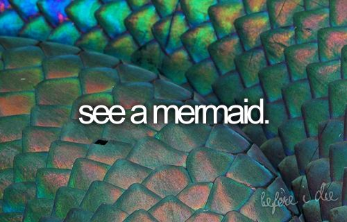See a mermaid.: Bucketlist, Colors Patterns, Green, Fish, Dragon, Before I Die, Mermaids Tail, Macros Photography, Buckets Lists 3