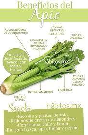 Apio españa o celery