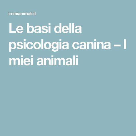 Le basi della psicologia canina – I miei animali