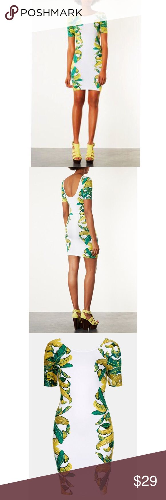 "SALE 🌴Topshop 🌴Leaf Bodycon Dress Technicolor banana leaves climb the sides and sleeves of a jersey body-con dress finished with a refreshing scooped back. Beautiful and unique design . Snug fit  32"" length . Cotton/elastane; machine wash. It's petite size 4=standard size 0-2 .  Only worn once for a very short time , looks brand new . Reasonable offers welcome , no trade Topshop Dresses Midi"