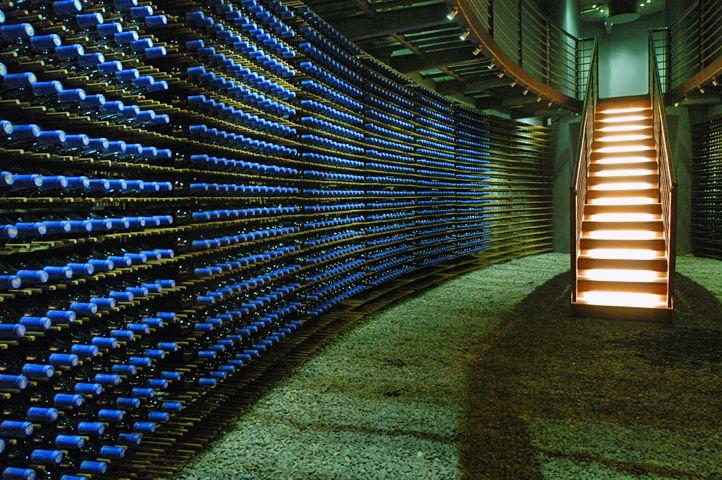 Family Wine Library Chile Santa Cruz Valle de Colchagua  Apalta