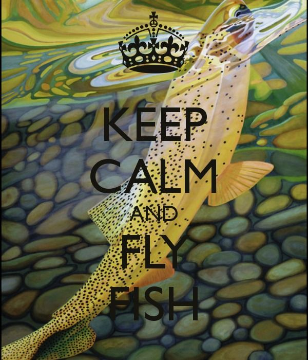 Keep Calm And Fly Fish Flyfishinglife Like To Cast A Dry Well