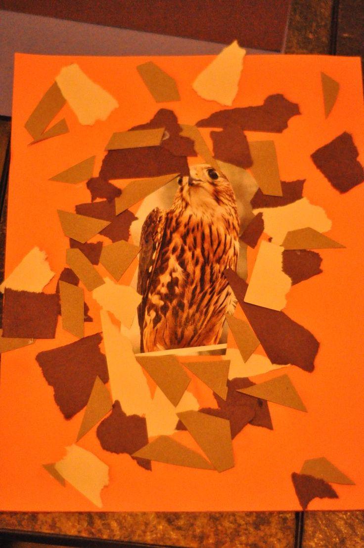 craft - teaching camouflage