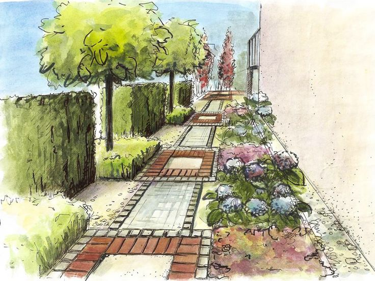 Garden Design Drawing find this pin and more on garden design 3d drawings Projekty Zieleni Landscape Architecturelandscape Designgarden Designlandscape Drawingsperspective