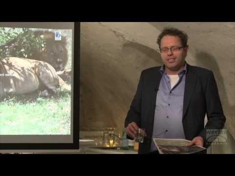 Lezing - Ervaringsdeskundigheid - Martijn Kole