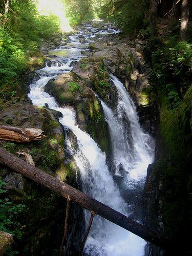 Cascadas Parque Olímpico Nacional, Washington Estado - EE.UU.