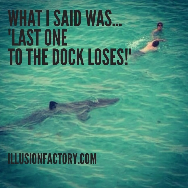 """What I said was....""""Last one to the dock loses!""""  We share quotes with our friends on Pinterest to help stimulate the world evolution in positive directions. If you like what we are sharing with you from The Illusion Factory and would like to discuss our advertising, marketing and social media services, call us at 818-788-9700 x1 so we may review your needs in greater detail. http://illusionfactory.com #shark #quotes, #quote #greatquotes #inspiration #philosophy #funny"""
