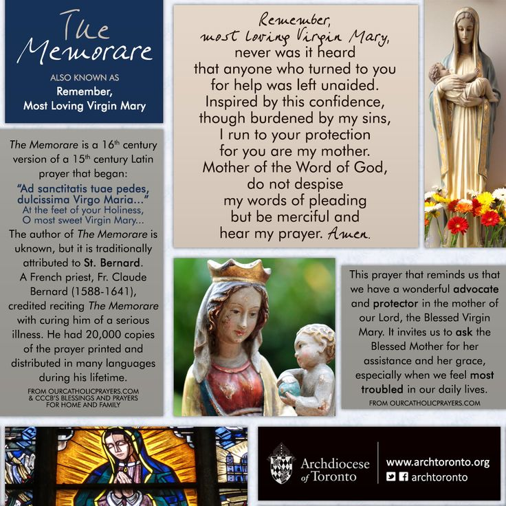 "Feeling troubled? Pray ""The Memorare."" We have a wonderful protector in the…"