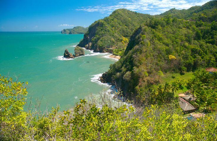 Dc Landscapes Seal Beach Ca