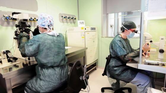 """Chiuso il laboratorio di analisi cliniche """"Leonardo da Vinci"""" convenzionato con il servizio sanitario regionale, che si trova in via Leonardo da"""
