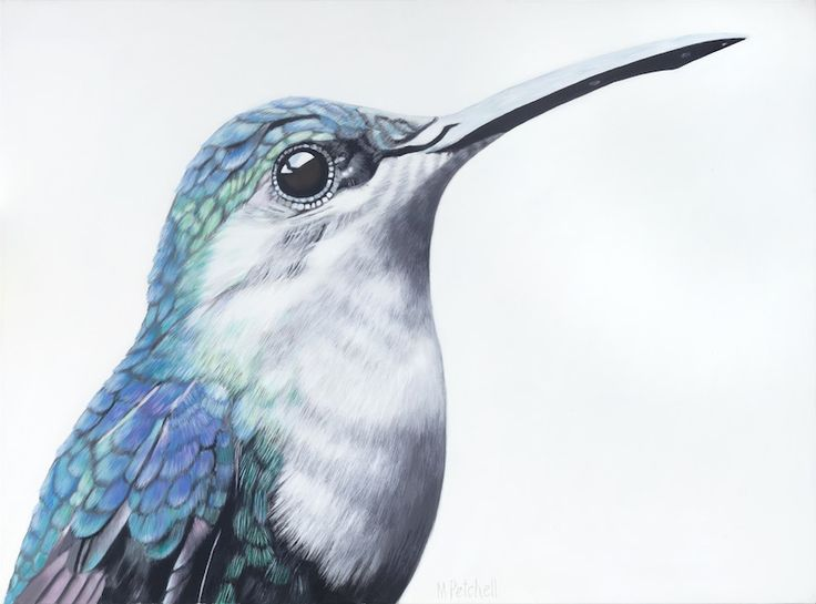 latest bird painting, #hummingbird # portrait #bird #feathers