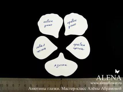 анютины глазки из фоамирана: 7 тыс изображений найдено в Яндекс.Картинках