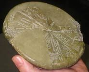 Cuneiform clay tablet translated for the first time depicts an asteroid strike in 3123 BCE when sodom and Gomorrah where destroyed.