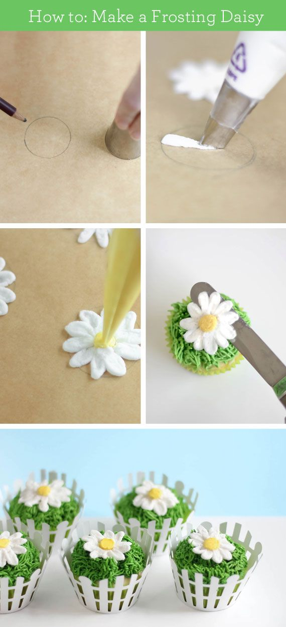 Learn how to make a frosting daisy. Pro tips: Draw your circle, then flip the paper so you don't have to worry about pencil lead. Once your blooms are piped, pop them in the freezer. When they are firm, you can transfer them with an offset spatula.