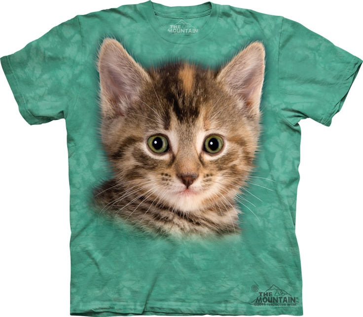Big Face Tyler the Kitten « Epic Shirts  re you also having a stroke of cuteness by looking at this little cute baby kitten t shirt of epicness? Are you a bad boy that needs to show your soft side, this is probably the best way to do it.