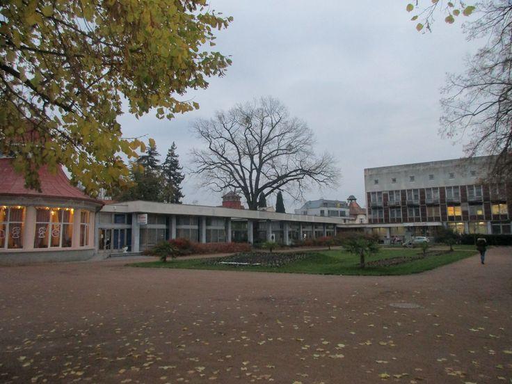 Lázeňský park - Poděbrady - Česko
