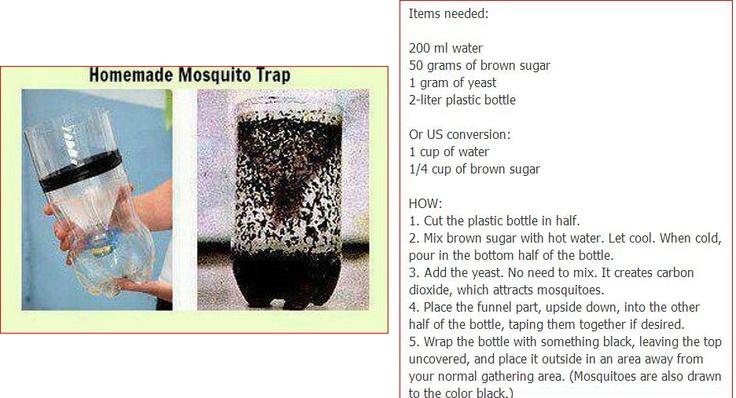 muggenvanger van petfles