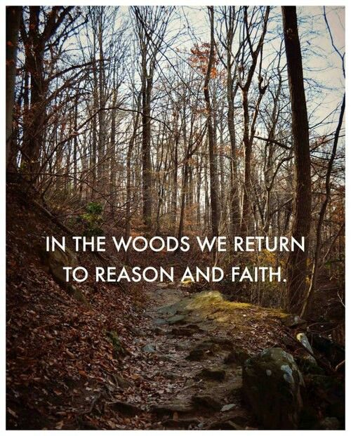 """""""In the woods, we return to reason and faith. There I feel that nothing can befall me in life, — no disgrace, no calamity (leaving me my eyes), which nature cannot repair. Standing on the bare ground, — my head bathed by the blithe air and uplifted into infinite space, — all mean egotism vanishes. I become a transparent eyeball; I am nothing; I see all; the currents of the Universal Being circulate through me; I am part and parcel of God....Ralph Waldo Emerson"""