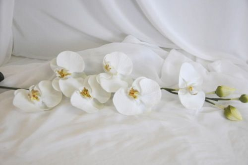 more silk flower options